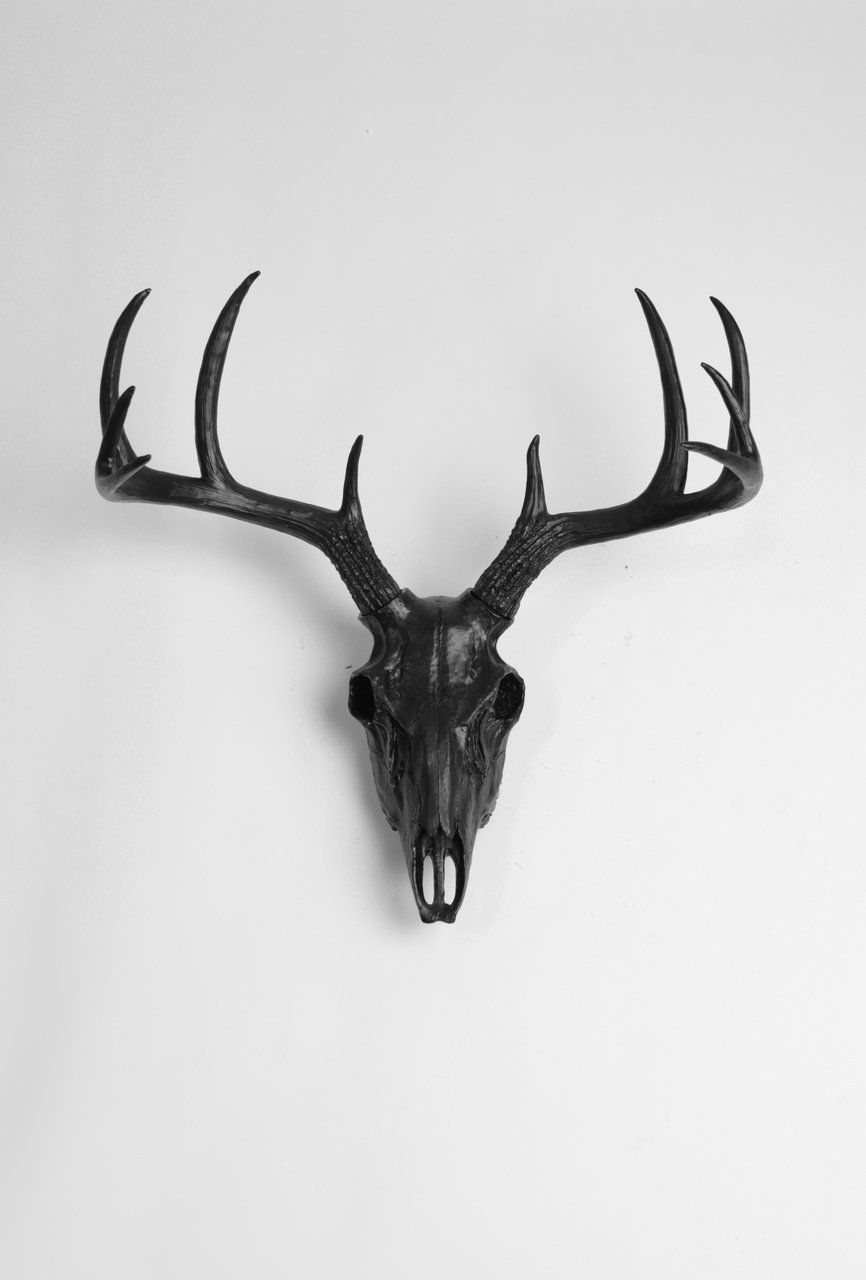 Get Quotations · Faux Animal Skull Wall Mount In Black By White Faux  Taxidermy | Black Resin Deer Skull