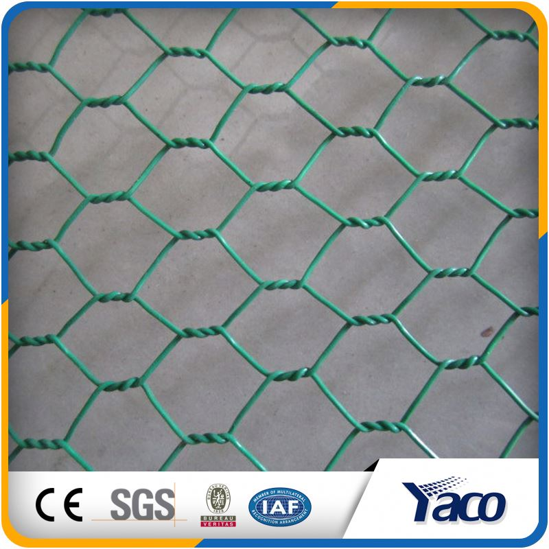 decorative galvanized windows screening wire screen netting