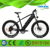 2017 Strong mountain bikes for men 26'' fat tyre electric bicycle