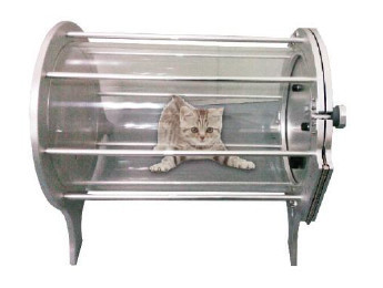Protable pet hyperbaric oxygen therapy training chamber for Table 6 hyperbaric treatment