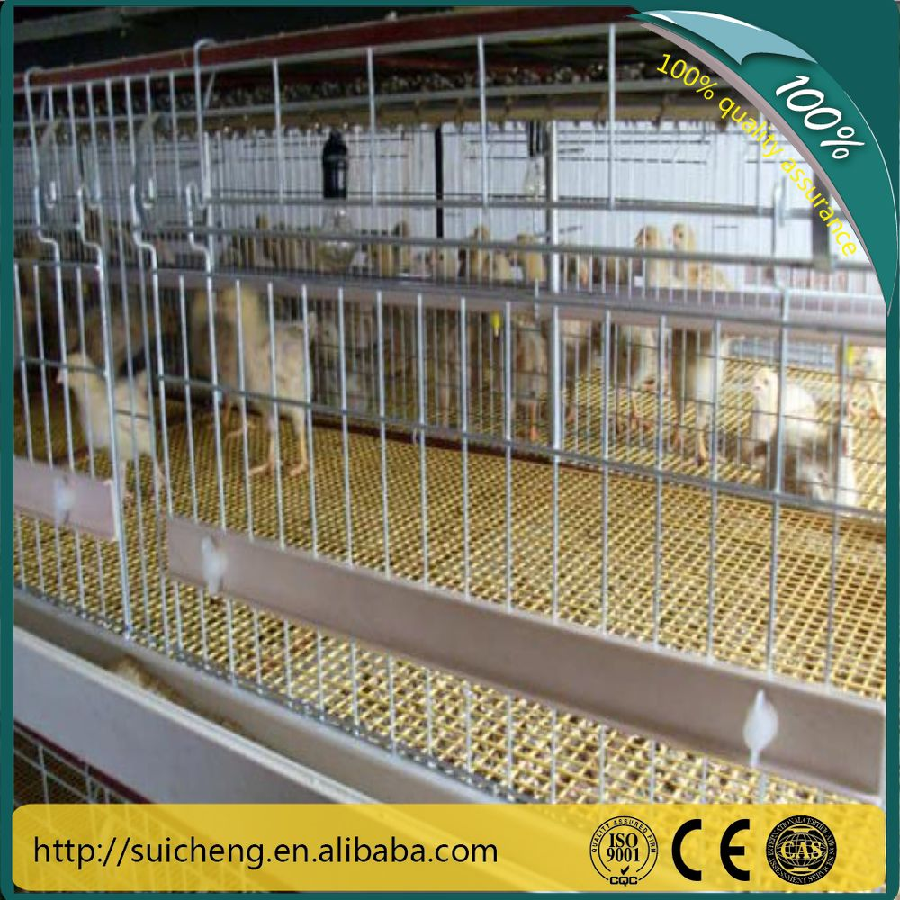 Guangzhou Poultry Farm Equipment H Type 3Layer Baby Chicken Cage