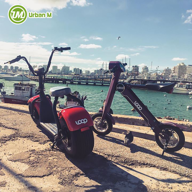 2 Wheel 1000w Fast speed Electric Citycoco Scooter