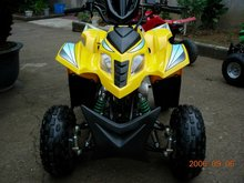 50cc Gas-Powered 4-Stroke Engine Quads BikeWZAT0509