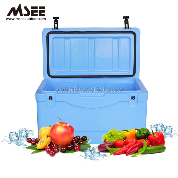 Customized One-Piece Seamless Plastic Reusable Picnic Ice Box