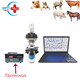 Top sell Veterinary sperm analysis machine/dog cat horse cow animal semen quality analyzer case