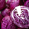 best cabbage on sale/2016 price for red cabbage factory price