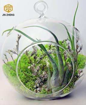Blown Glass Hanging Vase Hydroponic Terrarium Succulents Planter