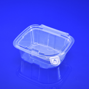 PET Disposable Clear Plastic Food Container Rectangle Plastic Lunch Box