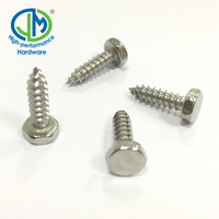 Zinc plated double headed tapping screw with epdm