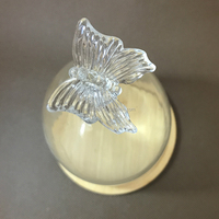 Factory Wholesale Glass Dome Cloche Bell Butterfly Top Glass Dome Vase