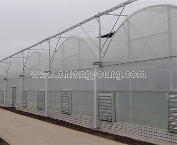 Garden Greenhouses 600d Mylar Mushroom Grow Tent Kits For Indoor Gardening  - Buy Garden Greenhouses 600d Mylar Mushroom Grow Tent Kits For Indoor