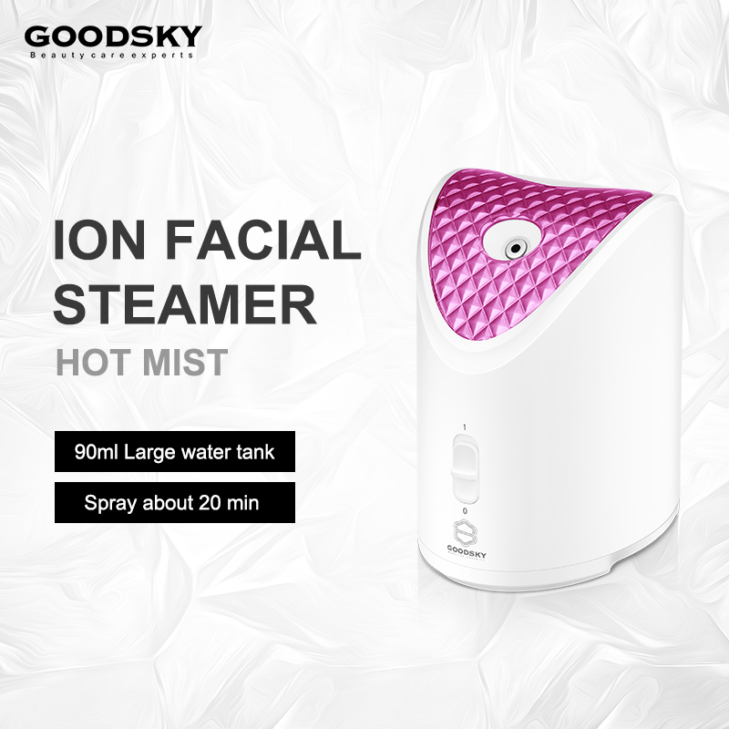 Hot Sale Salon Spa Ionic Nano Mini Portable Facial Steamer