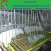 metal PVC coated folding portable bird cages pigeon cages