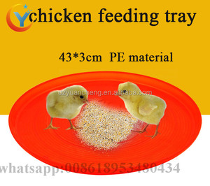 43cm chick feed tray/chicken baby feed tray/chicken feeder pan