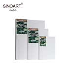 Academy Studio Art Painting Set Stretched Inkjet Canvas Prints Blank Art Canvas