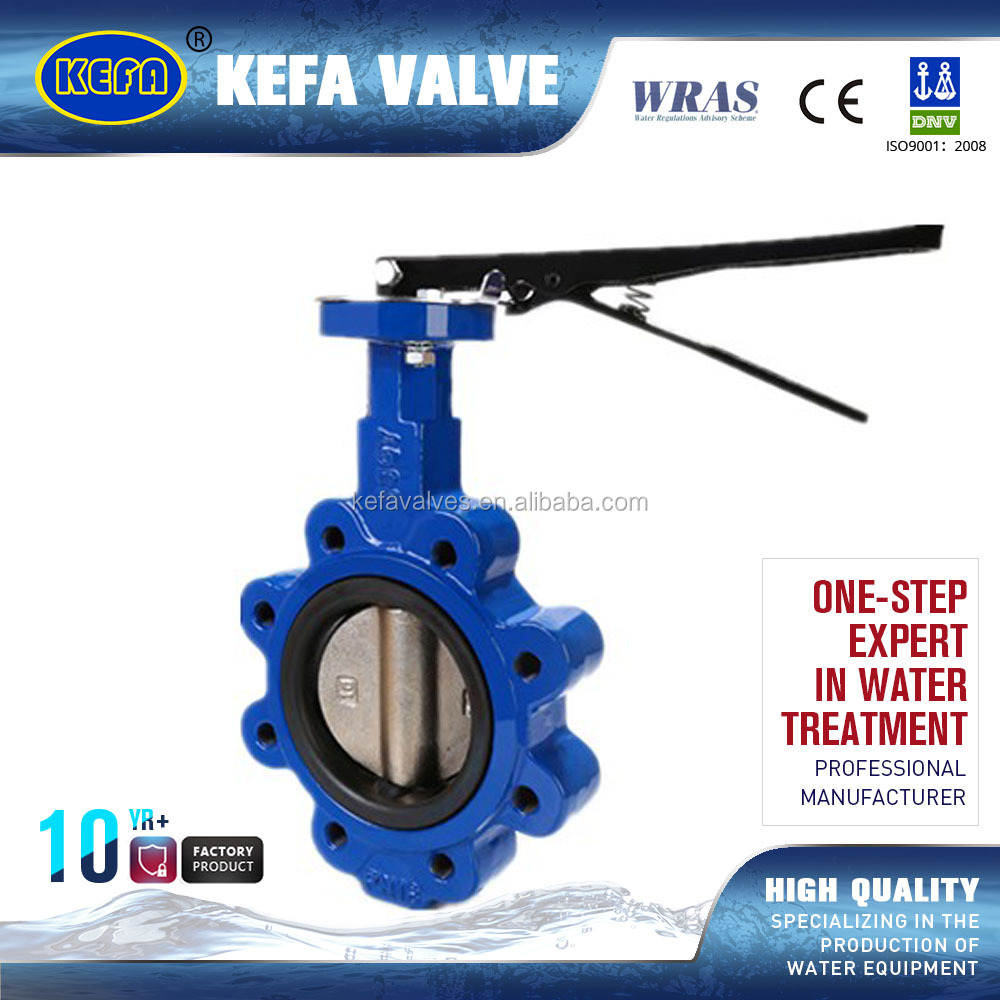 Lug Type Pin Backed Seat Butterfly Valve