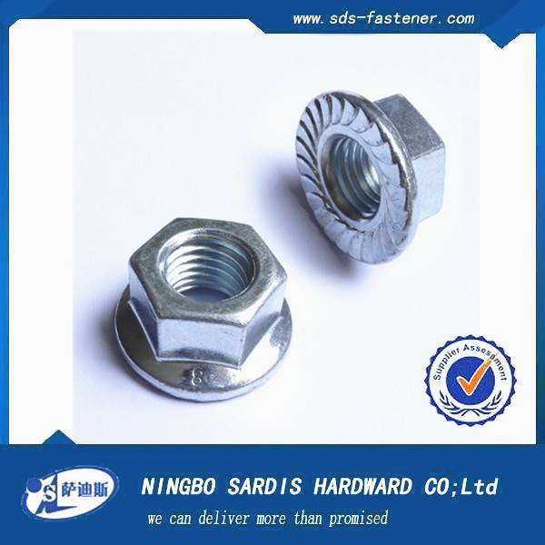 Made in Zhejiang China fastener manufacture&factory&supplier Hex Flange Nut