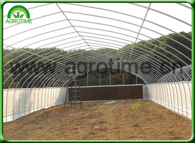 green house com.jpg
