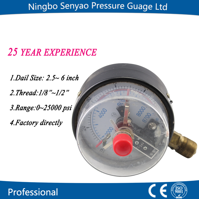 New Style Electronic Pressure Gauge