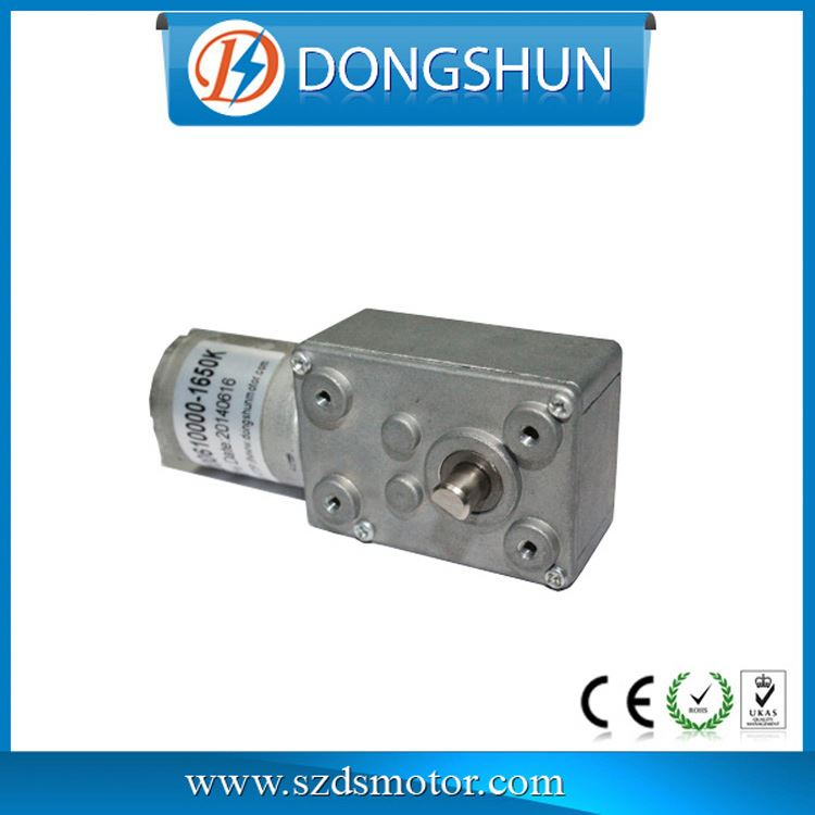 DS-46SW370 6 v dc worm gear motor encoder