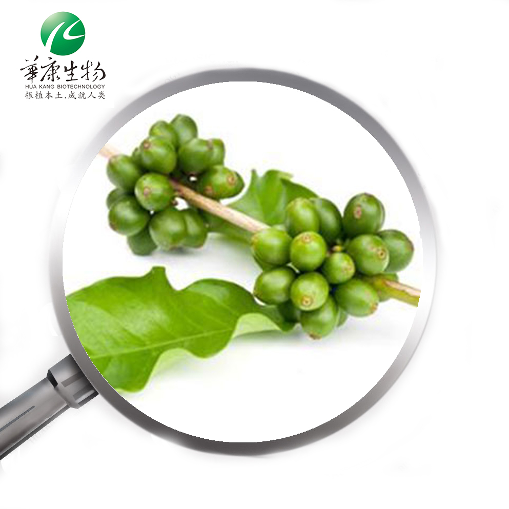 Factory Supply High Quality Green Coffee Bean Extract Powder Good
