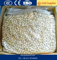 Raw Pistachio nuts price