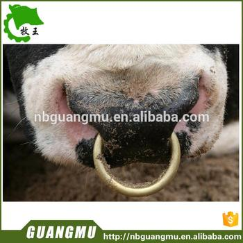 Multifunctional Bull Nose Live Center Bull Nose Ring Copper With Great Price Buy Bull Nose Live Center Bull Nose Ring Copper Manage Ox Good Tool Bull Nose Live Center Bull Nose Ring Copper