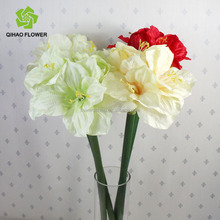 Pu stem big heads clivia artificial flower hand work flowers