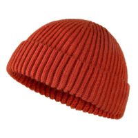 High Quality Wholesale Cheap Custom Knitted Beanies/ grey Knitted Hat/Winter Hat