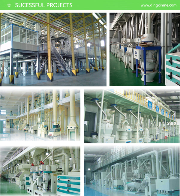 High Quality Double Engines Suction Type Gravity Destoner Paddy / Rice / Wheat / Soybean / Peanut / Rapeseed / Corn / Sesame