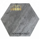 LUSSO Ceramic untied States design 520x600mm Hexagon NORWAY FOREST porcelain tile anti slip tile for floor