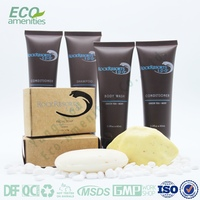Hotel room / airline amenities list body care set