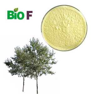 Factory Supply Chrysin Extract Powder Free Sample Chrysin