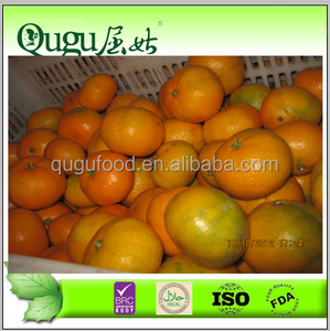 China fresh baby mandarine