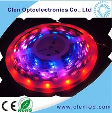 2012 Most Popular smd 5050 rgb flexible led strip 32led/m CE&ROHS Manufacturers tm1803 led strip
