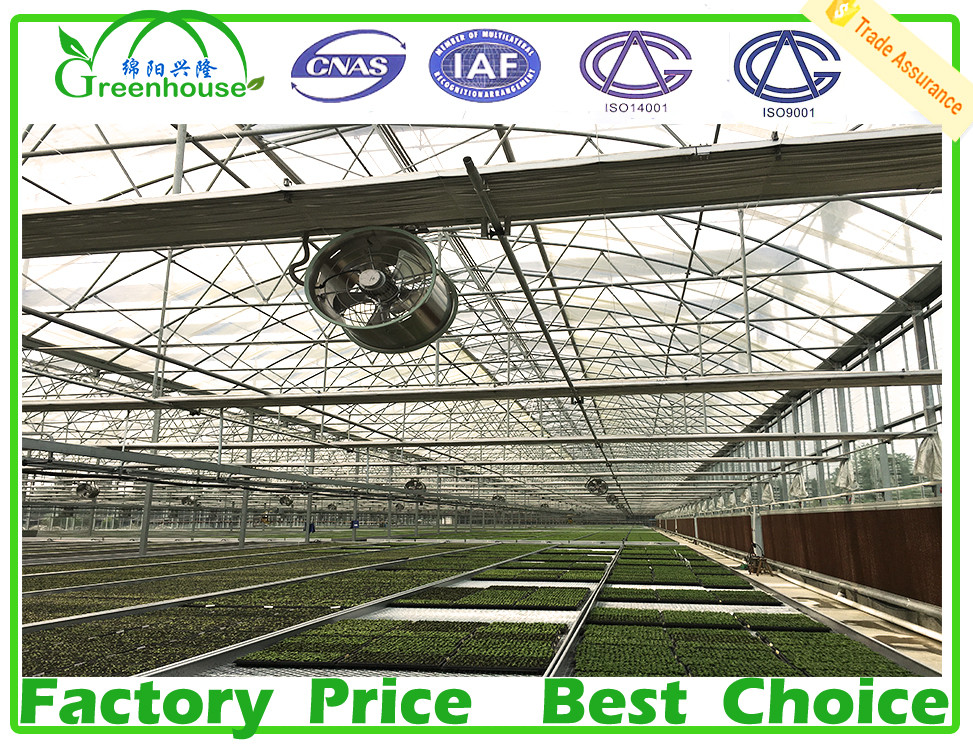 Agricultural farm green house for sale