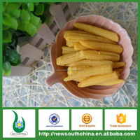 Custom kernel steamed sterilized cheap price canned sweet baby corn