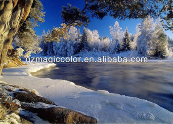Snow Forest And Lake Landscape Photo Wallpaper Window Murals