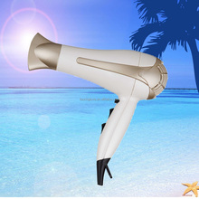 2200W Professional or Home Use High-power Hair Dryer with Ionic