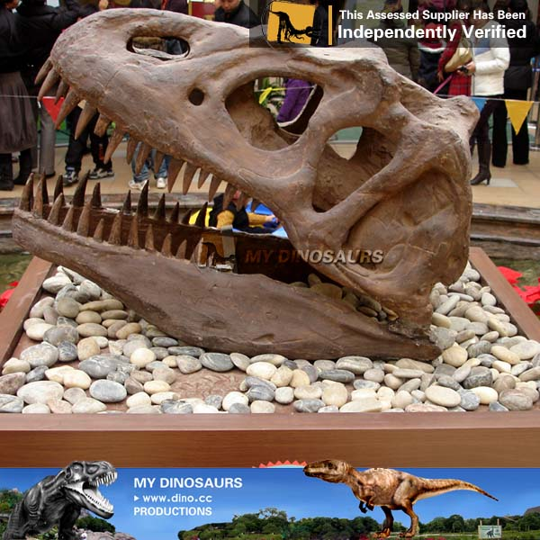 My Dino-Cheap simulation large dinosaur fossils for sale