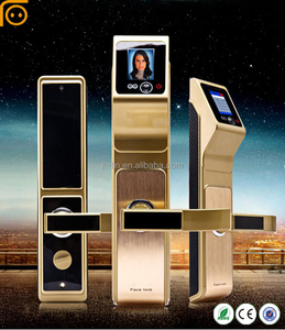 Intelligent Facial China Fashion Outdoor Biometric Lock