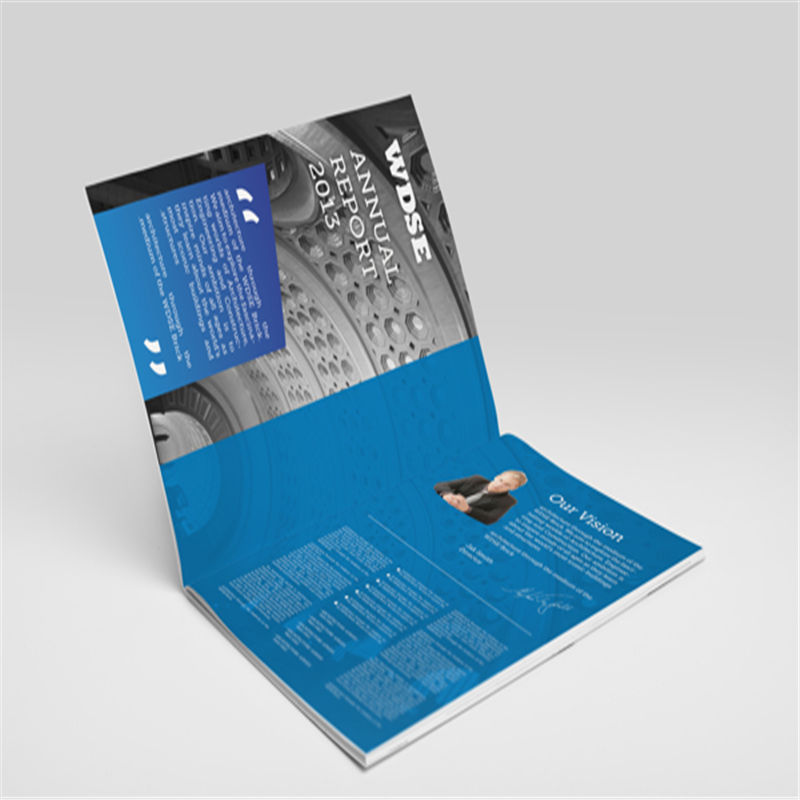 China Factory Custom brochure catalog/flyer/ booklet printing Directly