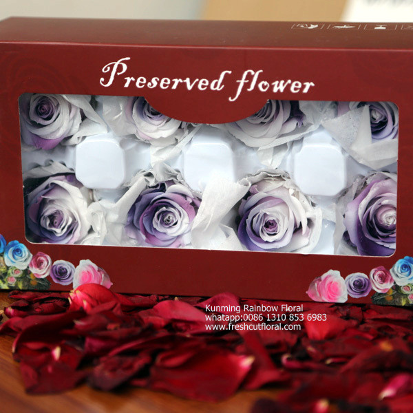 Multi-Layered What Does A Preserved Flower Mean With Top Quality For Home Decoration