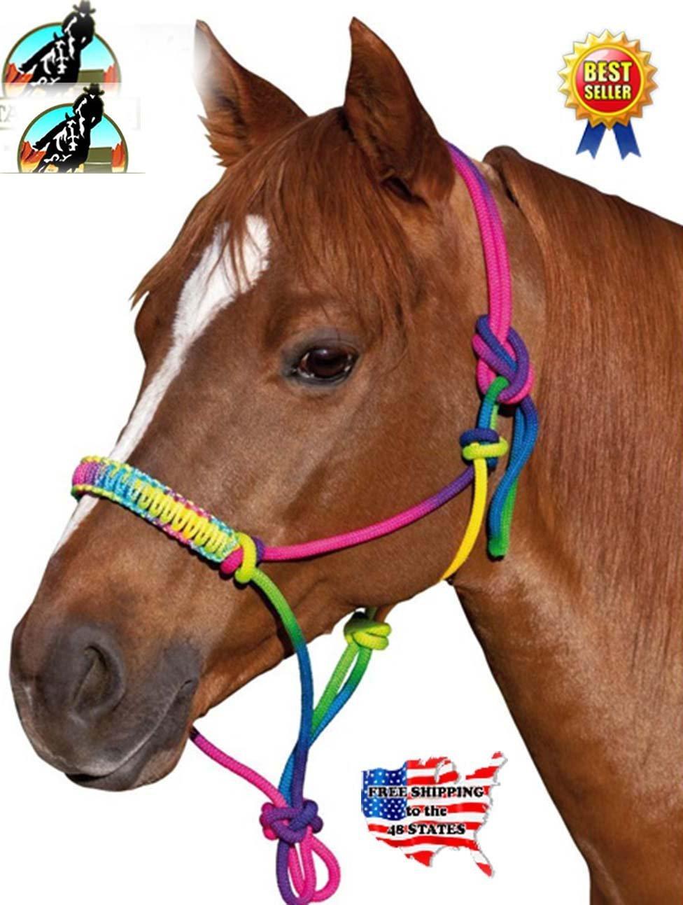 Buy Prorider Nylon Braided Horse Rope Halter Noseband Tack Rainbow 606120 In Cheap Price On Alibaba Com