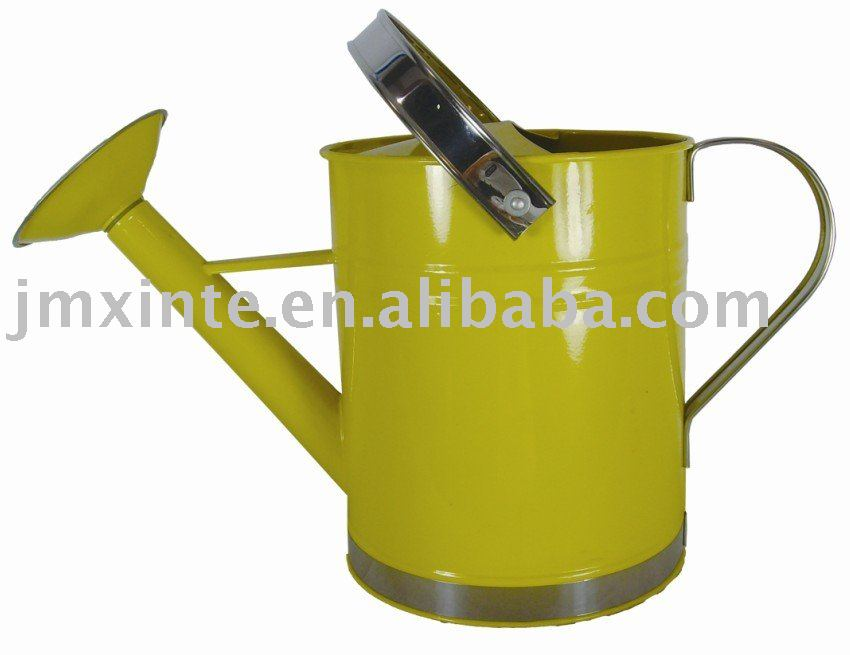 10 liter metal home and garden galvanized watering can