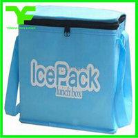 Cangnan factory customized logo promotional bulk cooler bag