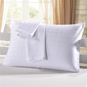 Factory Best Ing Terry Cloth Rectangle Plain Pillow Case