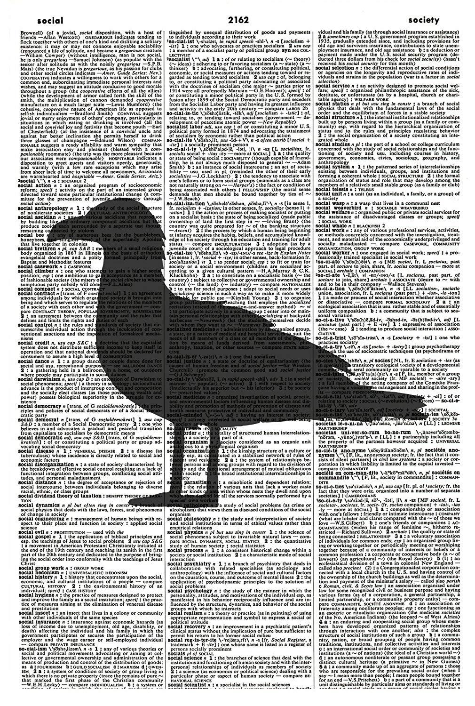Seagull ART PRINT - Bird Art Print - Animal Art Print - Vintage Art Print - Bird Silhouette Art Print - Bird Illustration - Wildlife Picture - Vintage Dictionary Art Print - Book Page Print 1175D