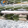 /product-detail/anping-hexagonal-wire-mesh-factory-with-latest-price-60809795285.html