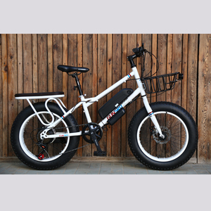 electric bicycle/fat tire cheap mountain electric bike/snow electric bike 20inch snow bike